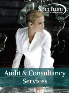Audit & Consultancy Services
